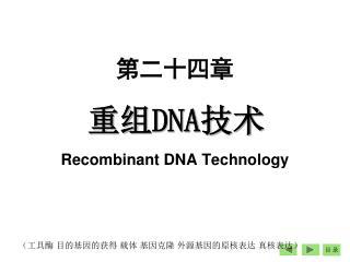 重组 DNA 技术 Recombinant DNA Technology
