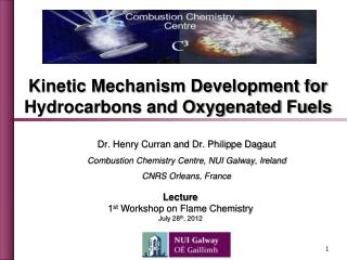 Dr. Henry Curran and Dr. Philippe Dagaut Combustion Chemistry Centre, NUI Galway, Ireland