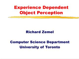 Experience Dependent Object Perception
