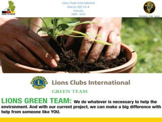 Lions Green Team