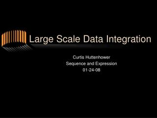 Large Scale Data Integration