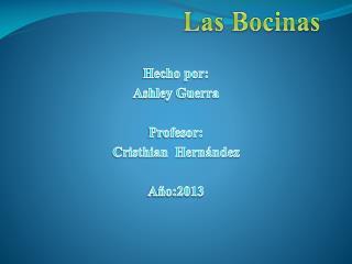 Las Bocinas