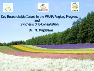 Key Researchable Issues in the WANA Region, Progress and      Synthesis of E-Consultation