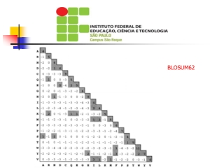 UNIVERSIDADE ESTADUAL DE SANTA CRUZ-UESC