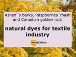Ashen s barks, Raspberries mash and Canadian golden rod:  natural dyes for textile industry