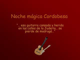 Noche mágica Cordobesa