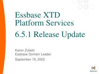 Essbase XTD Platform Services 6.5.1 Release Update