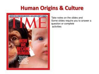 Human Origins & Culture
