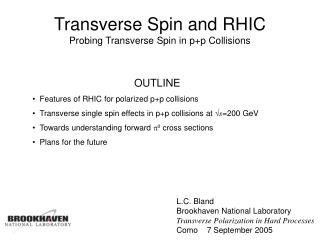 Transverse Spin and RHIC Probing Transverse Spin in p+p Collisions