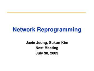 Network Reprogramming