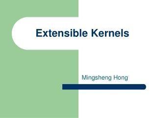 Extensible Kernels