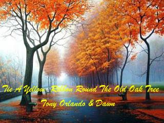 Tie A Yellow  Ribbon Round The Old Oak Tree               Tony Orlando & Dawn