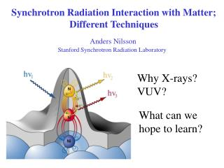 Synchrotron Radiation Interaction with Matter; Different Techniques
