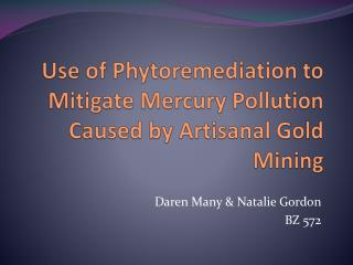 Use of  Phytoremediation  to Mitigate Mercury Pollution Caused by Artisanal Gold Mining