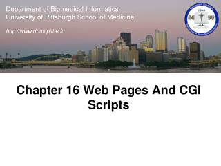 Chapter 16 Web Pages And CGI Scripts