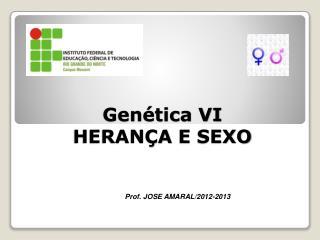 Gen�tica VI HERAN�A  E  SEXO