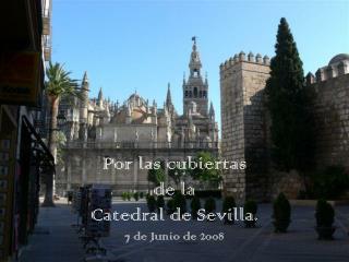 Por las cubiertas de la Catedral de Sevilla. 7 de Junio de 2008