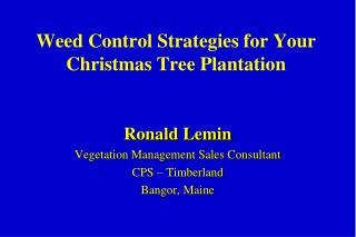 Weed Control Strategies for Your Christmas Tree Plantation
