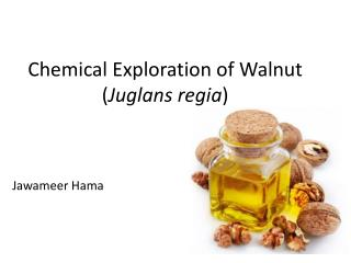 Chemical  Exploration  of Walnut ( Juglans regia )