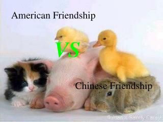 American Friendship
