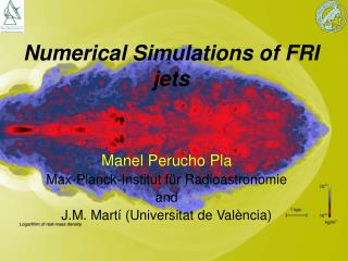 Numerical Simulations of FRI jets