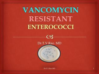VANCOMYCIN  RESISTANT  ENTEROCOCCI
