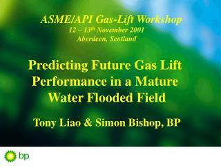ASME/API  Gas-Lift Workshop