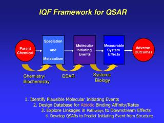 IQF Framework for QSAR