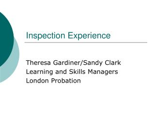Inspection Experience