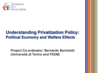 Understanding Privatization Policy:  Political Economy and Welfare Effects