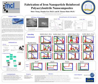 Fabrication of Iron Nanoparticle Reinforced Polyacrylonitrile Nanocomposites