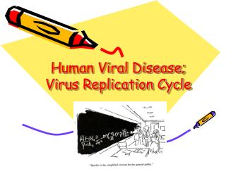 Human Viral Disease; Virus Replication Cycle