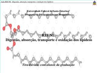 REUNI:   Digestão, absorção, transporte e oxidação dos lipídeos
