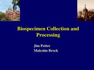 Jim Potter Malcolm Brock