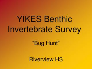 YIKES Benthic Invertebrate Survey