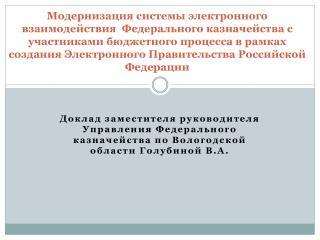 Стратегические задачи Федерального казначейства в рамках Электронного Правительства РФ