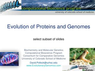 Evolution of Proteins and Genomes select subset of slides