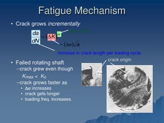 Fatigue Mechanism