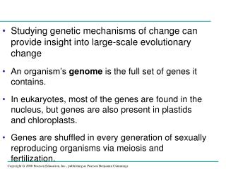 Studying genetic mechanisms of change can provide insight into large-scale evolutionary change