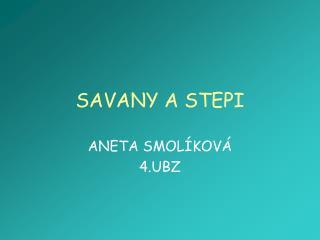 SAVANY A STEPI