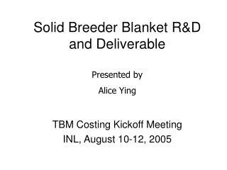 Solid Breeder Blanket R&D and Deliverable
