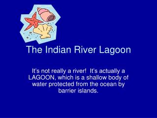 The Indian River Lagoon
