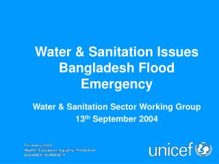 Water & Sanitation Issues Bangladesh Flood Emergency