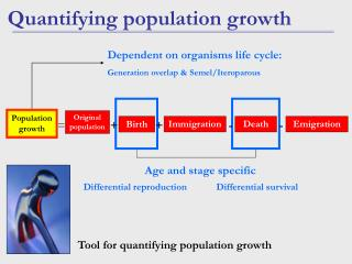 Quantifying population growth