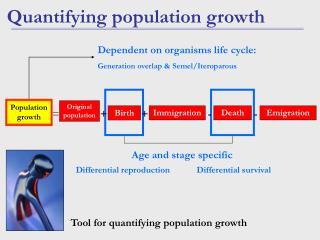Quantifying population growth