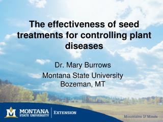 The effectiveness of seed treatments for controlling plant diseases