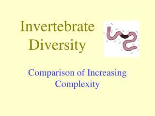 Invertebrate Diversity
