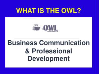 WHAT IS THE OWL?