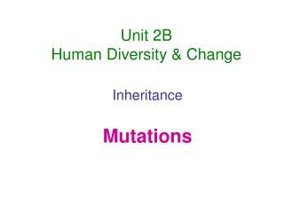 Unit 2B Human Diversity & Change