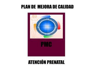 PLAN DE  MEJORA DE CALIDAD
